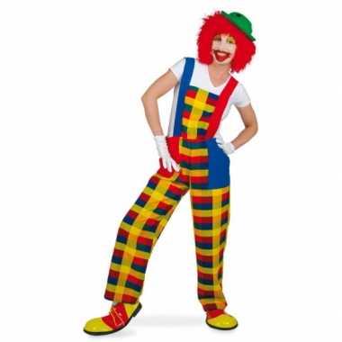 Clown pebbi verkleedverkleedkleren voor volwassenen