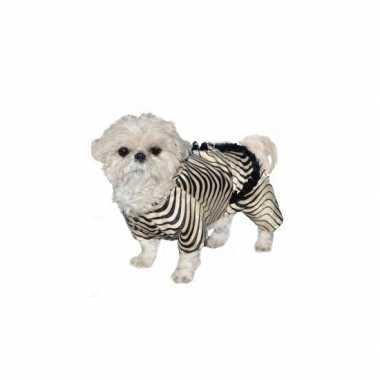 Honden zebra verkleedkleren