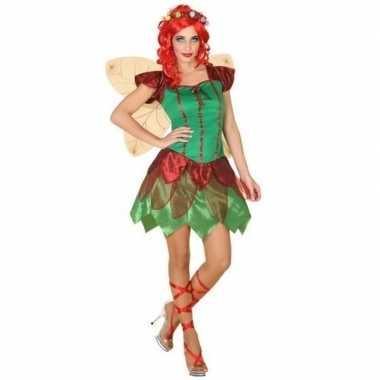 Toverfee/elfen jurkje verkleedkleren voor dames
